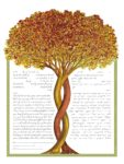 Into the Fall - Ketubah